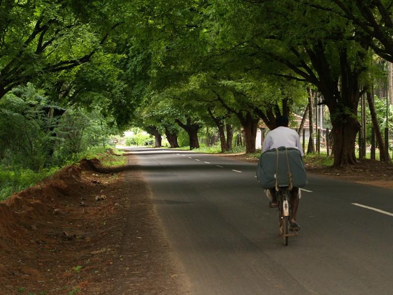 Quite_Road_Coimbatore
